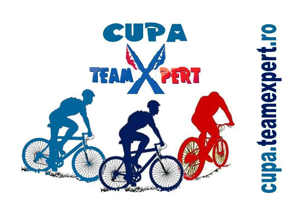 Cupa TeamXpert